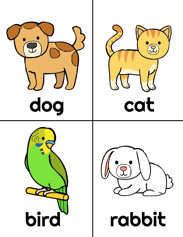 What Pet Should I Get Printables Pets Animal Theme Mini Books