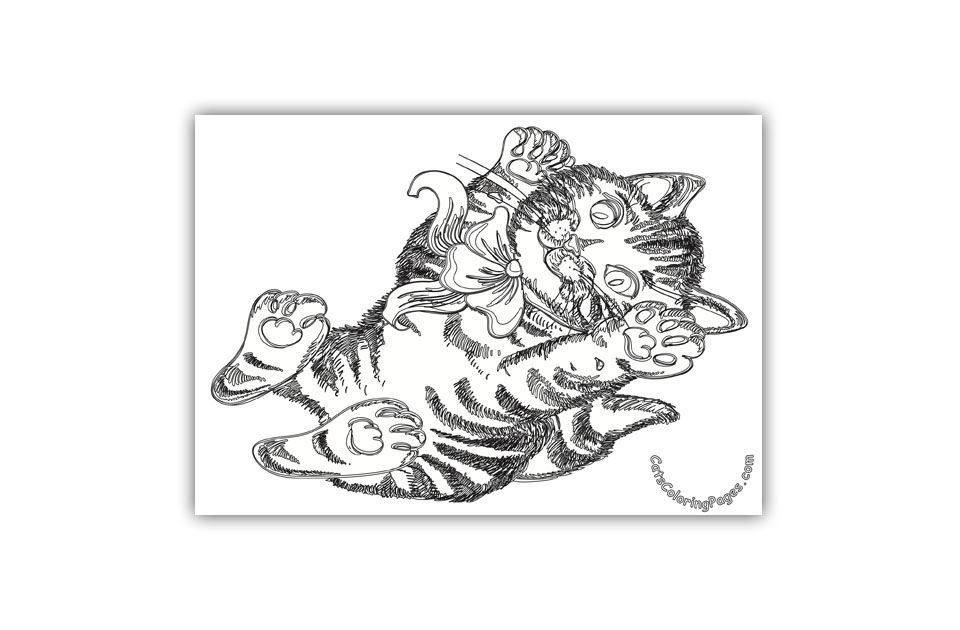 37+ Complicated cat coloring pages info