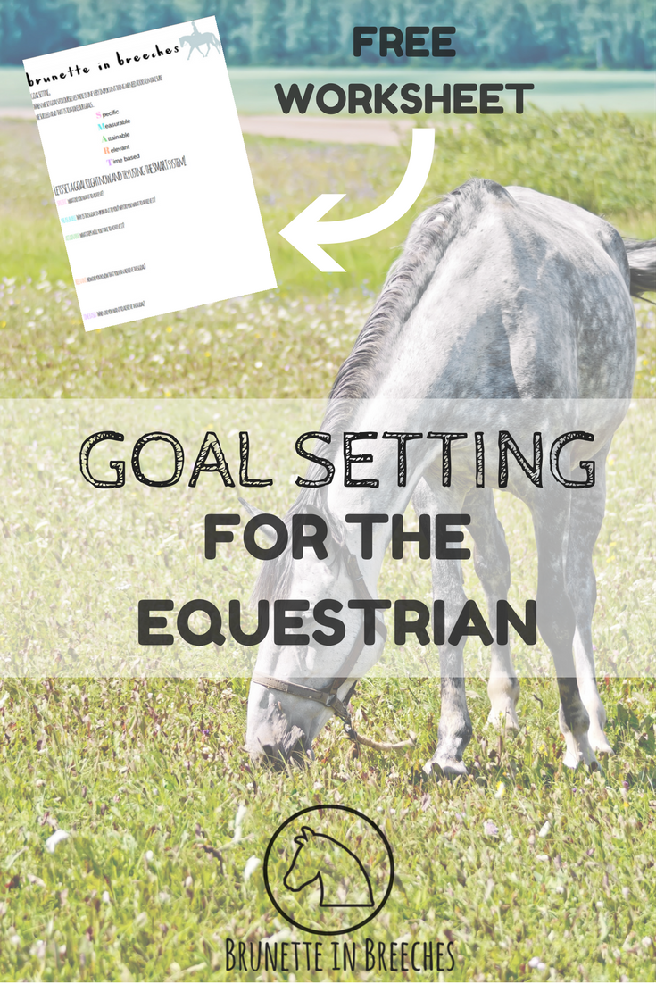 How to set equestrian goals to ensure success + FREE goal setting ...