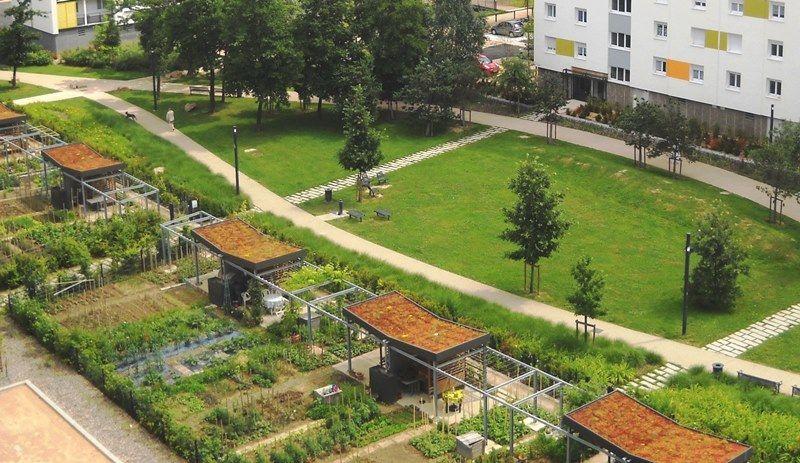 macon_bd | Gestion pluviale | Pinterest | Cabane jardin, Espaces ...