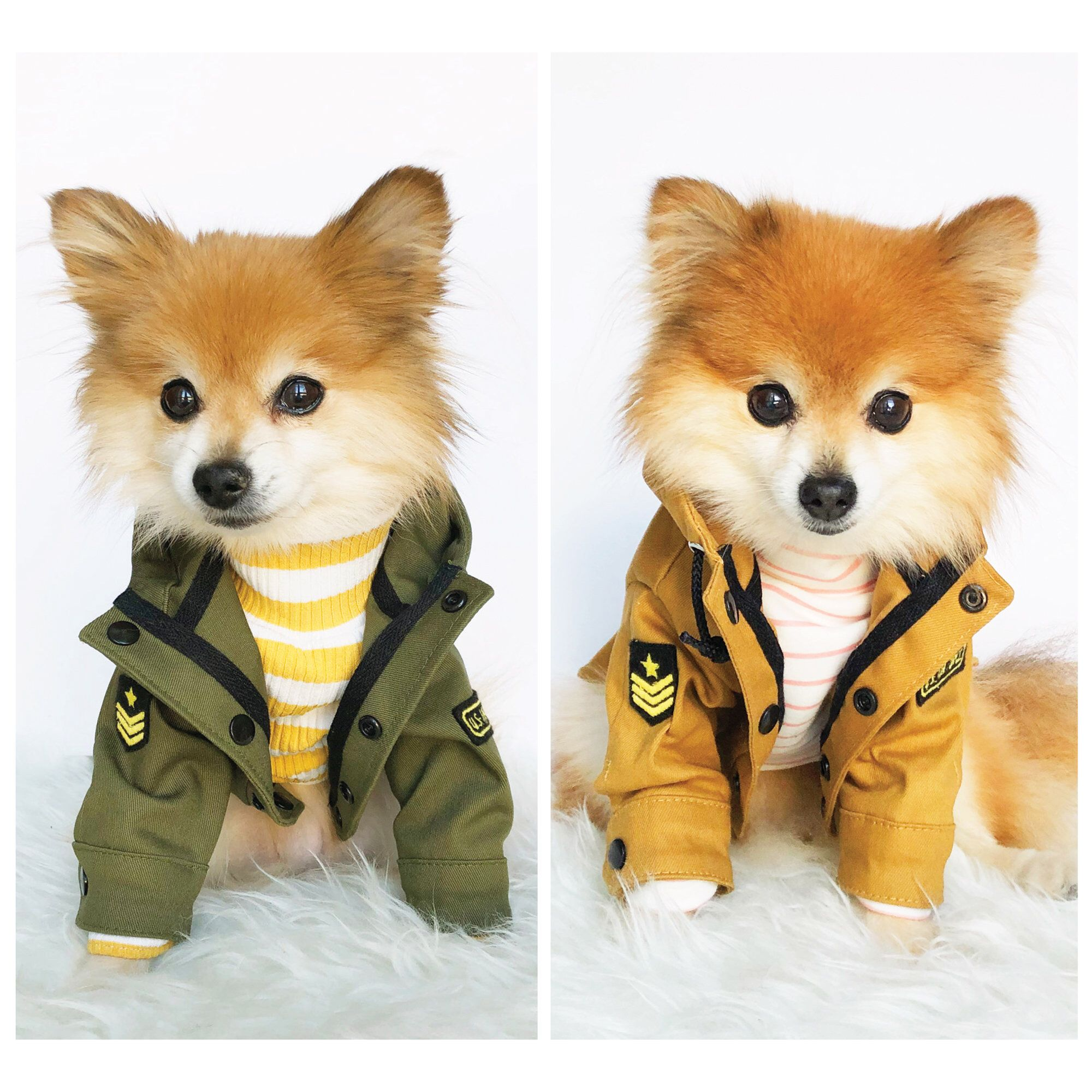 Excited To Share This Item From My Etsy Shop Dog Military Jackets Army Coats Puppy Clothes Pet Hoodies Dogs Outerwear Puppy Clothes Dog Jacket Luxury Dog [ 2000 x 2000 Pixel ]