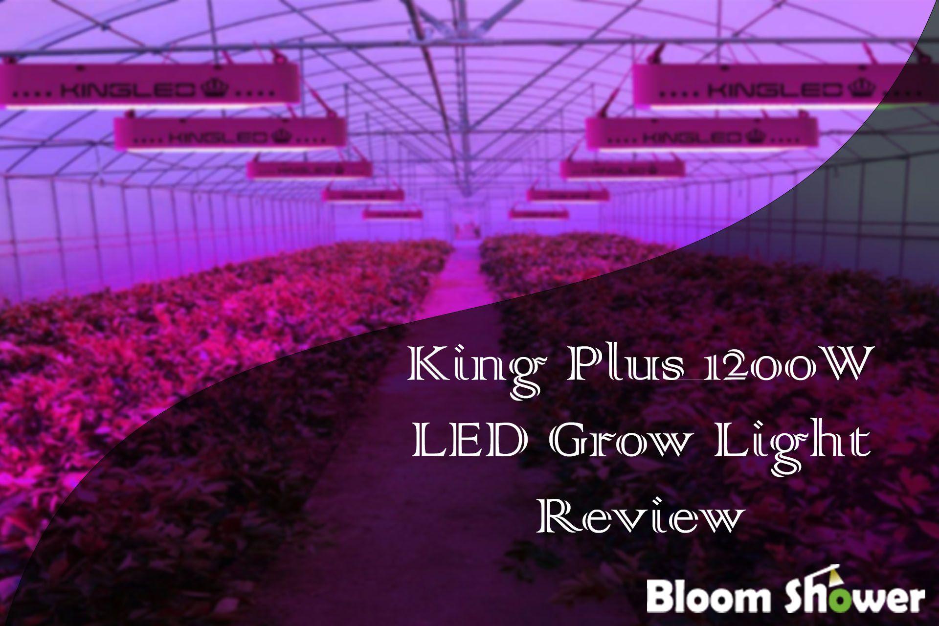 King Plus 1200w Led Review Led Grow Lights Grow Lights Led Grow