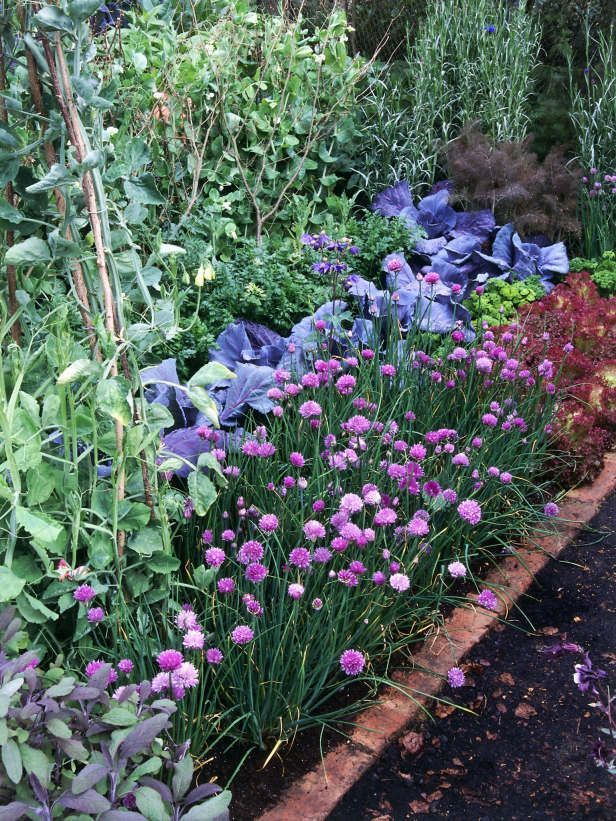 Herb Border is Activity Whole Family Can Enjoy. Plainning your ... on autumn floral border design, border rock garden design, border flower design, plant border design, border garden design ideas, border shade garden design, border christmas design,