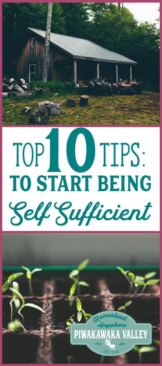 Being Self Sufficient: Top 10 Tips on How to Start TODAY ...