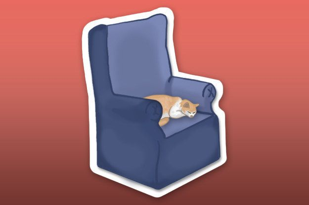 The It S Ok I Didn T Want To Sit There Anyway Emoji 17 Emojis All Cat Owners Wish Existed Cat Owners Cats Emoji