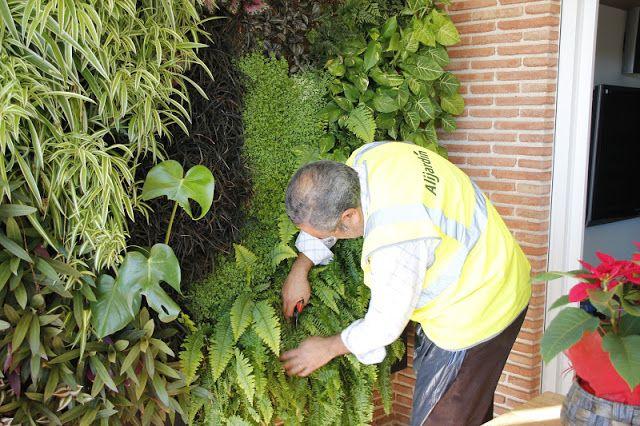 Mantenimiento De Jardines Verticales · Garden MaintenanceVertical ...