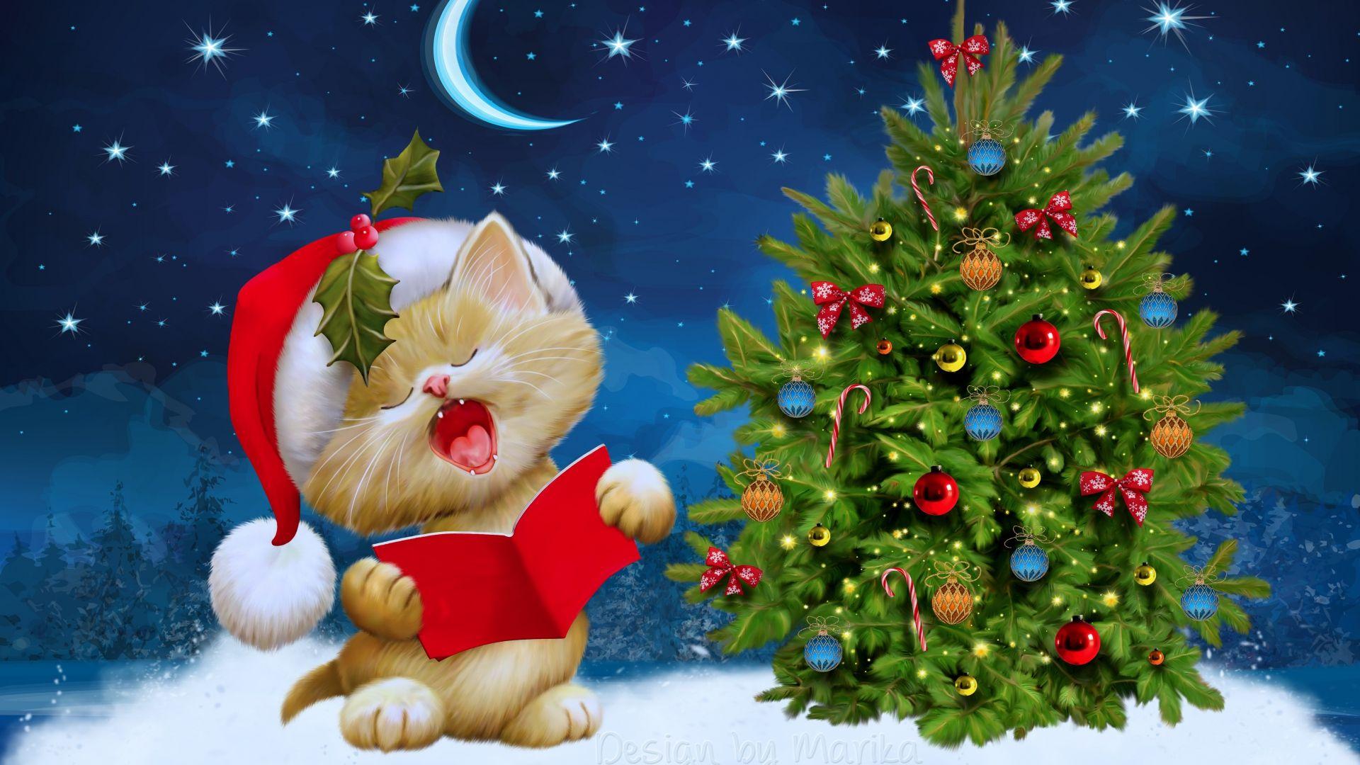 Hintergrundbilder Frohe Weihnachten.Hd Hintergrundbilder Weihnachten Fichte Katze Himmel Sterne