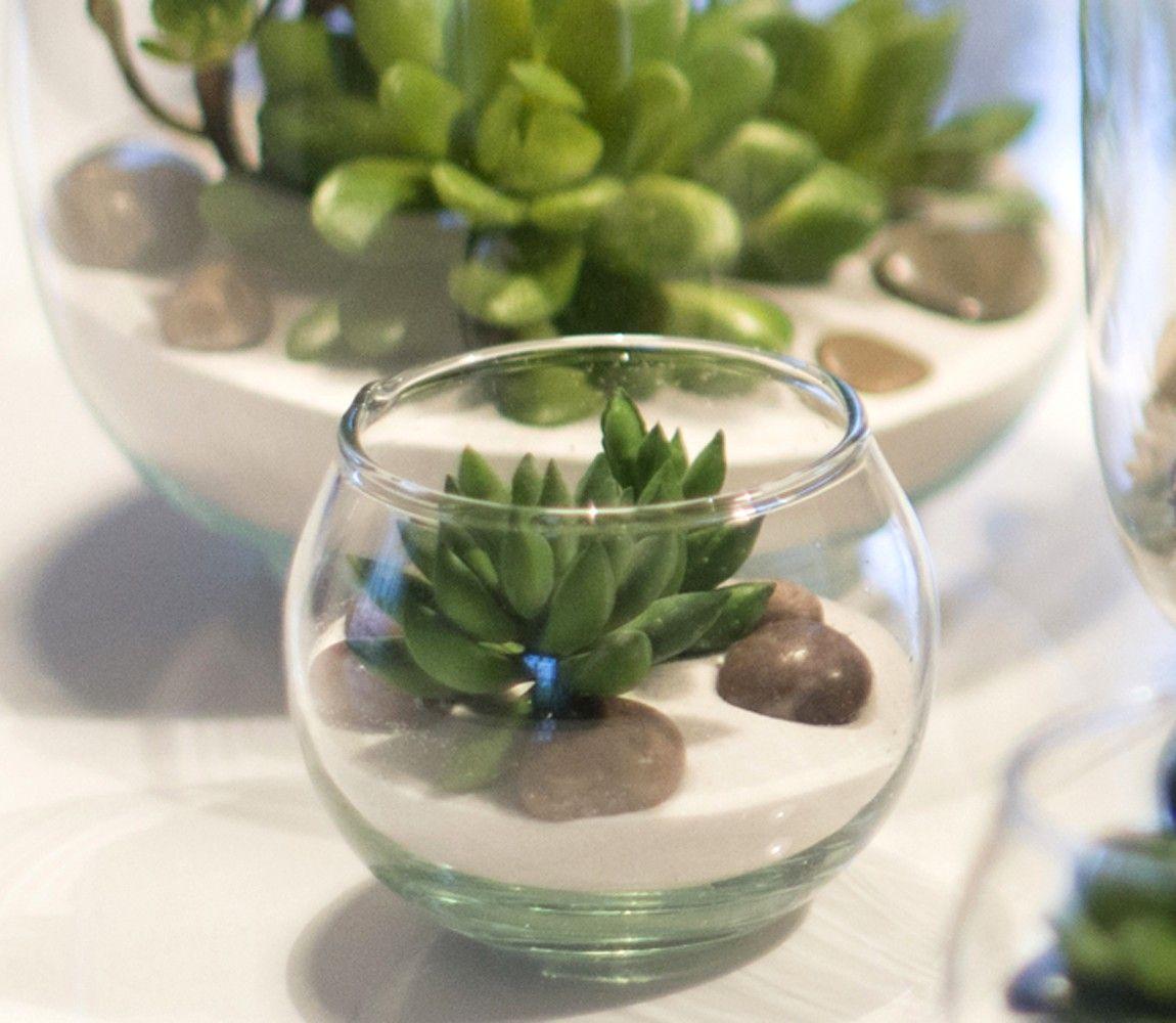 Terrarium Avec Plante Grasse Plantes Grasses Artificielles