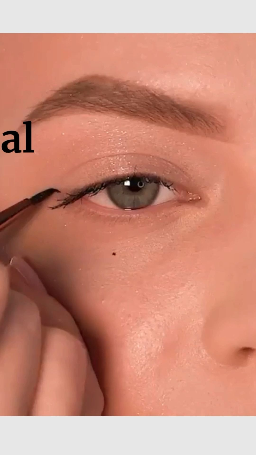 Eye Makeup Tutorial : step by step professional for beginners : Beauty Blog