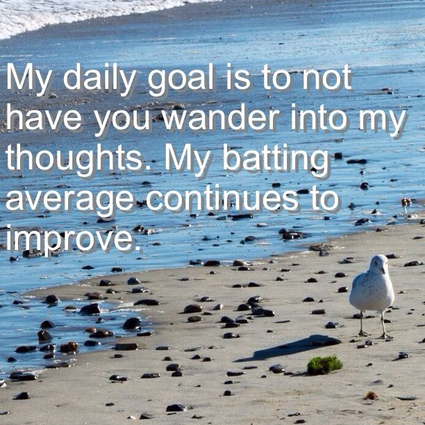 My daily goal is to not have you wander into my thoughts. My batting average continues to improve.