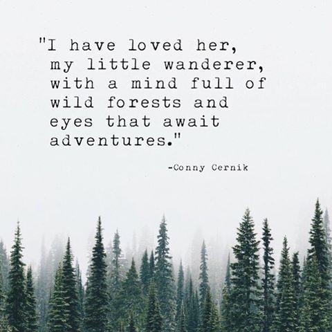 Adventurer …
