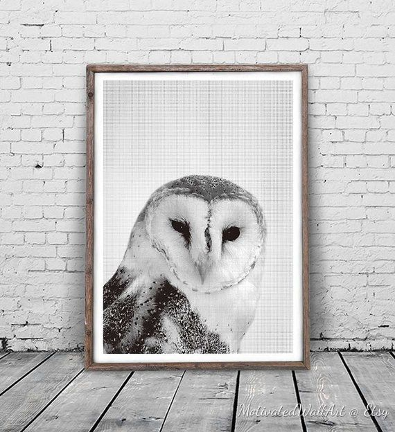 Owl Print Owl Photography Nature Photo Print Nursery Owl Art Large Wall Art Print Nursery Wall Art Digital Pr Owl Photography Owl Nursery Art Owl Wall Art