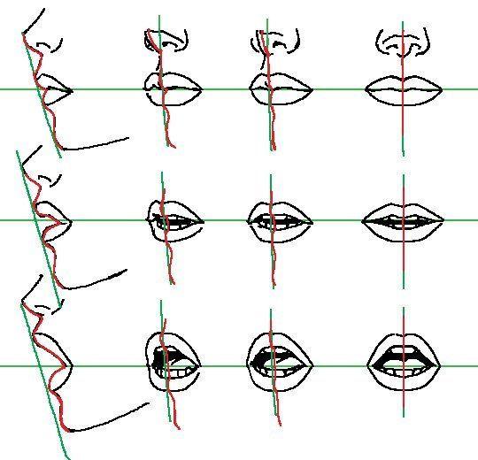イラストを描くときの口の形口の中の見え方と描き方のコツ ライン