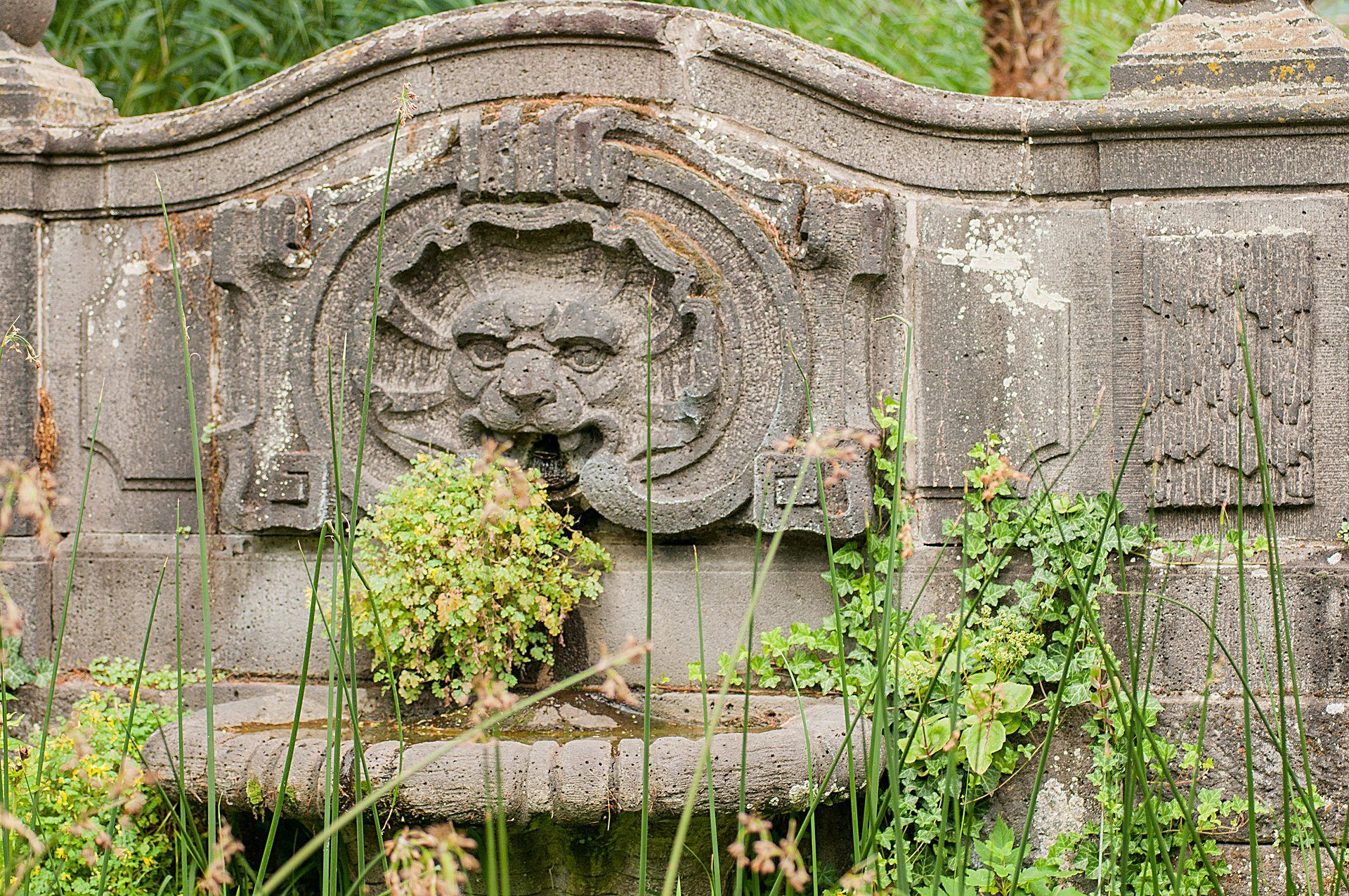 Londons Wunderbarer Botanischer Garten – Tintnwrap