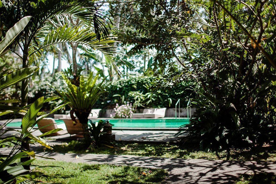 Dream vacation in Bali #bali #indonesia #travel #beach #nature #holiday #ubud #photography #love #trip... Dream vacation in Bali #bali #indonesia #travel #beach #nature #holiday #ubud #photography #love #trip #explorebali #baliindonesia #instagood #sunset #photooftheday #ocean #travelgram #beautiful #wanderlust #travelphotography #vacation #instatravel #island #summer