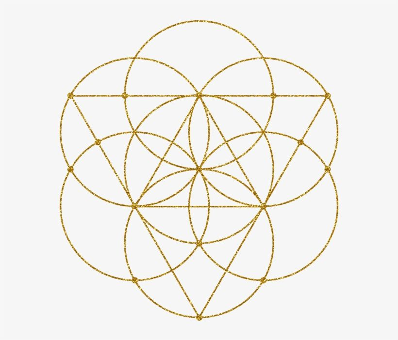 Flower Of Life - Sacred Geometry Circle Tattoo Transparent PNG - 604x641 - Free Download on NicePNG