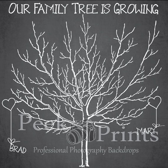 Wedding Backdrop 8ftx8ft Family Tree Chalkboard Photobooth