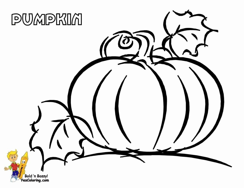 Thanksgiving Coloring Pictures Free Printables