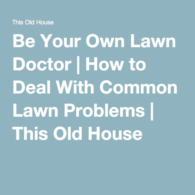 Be Your Own Lawn Doctor - How to Deal With Common Lawn Problems - This Old House