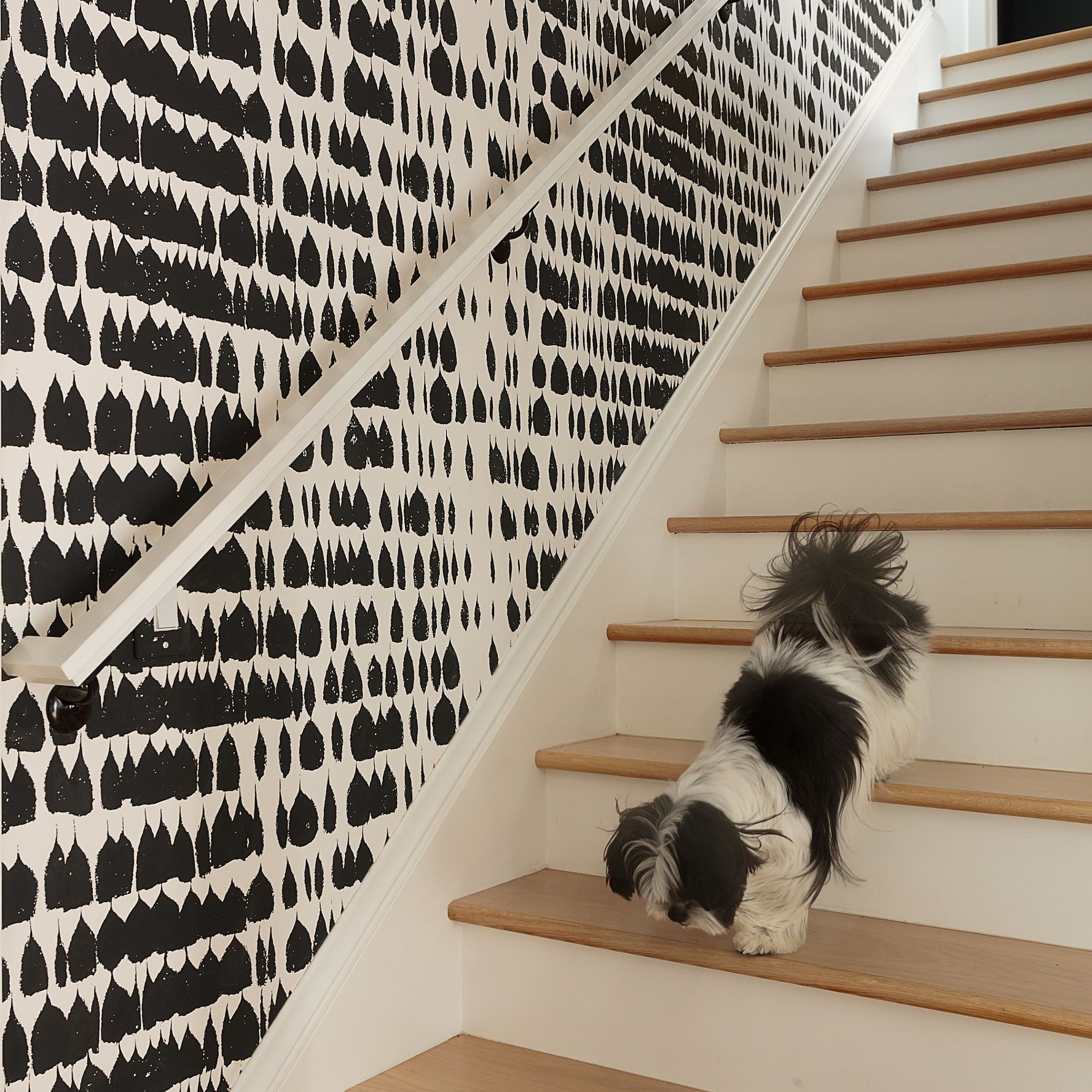 35 Hallway Decor Ideas To Try In Your Home: 8 Unexpected Wallpaper Ideas To Try In Your Home