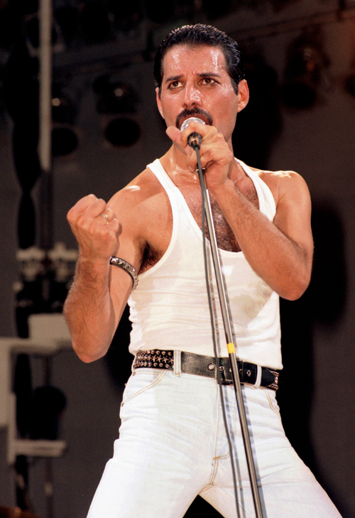 Freddie Mercury Queen Queen Freddie Mercury Freddie Mercury Birthday Freddie Mercury