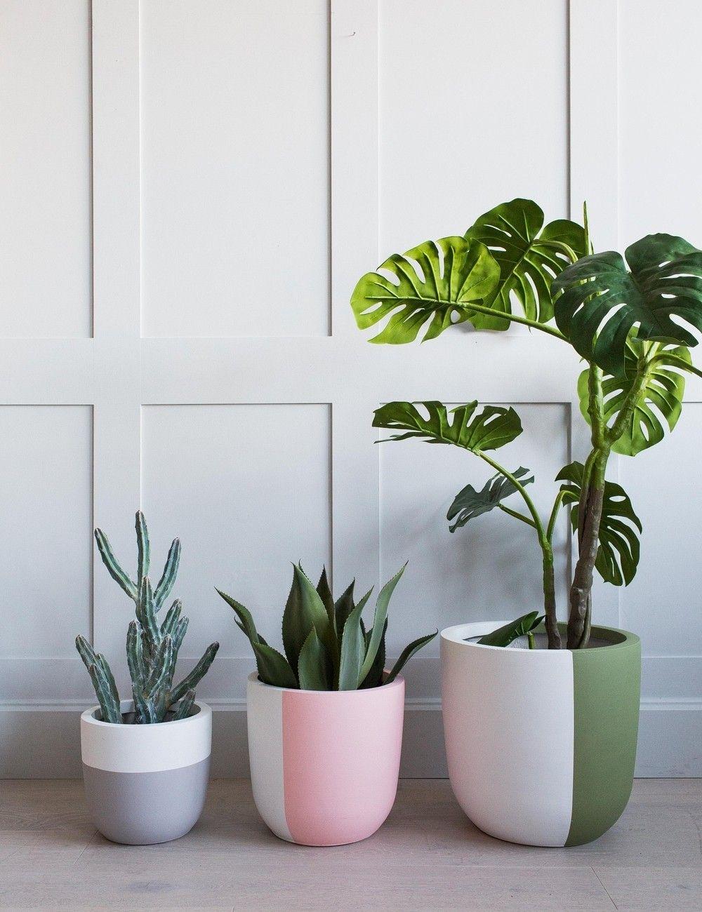 Green Plants Concrete Pots Via Stylizimo Woonkamerplanten