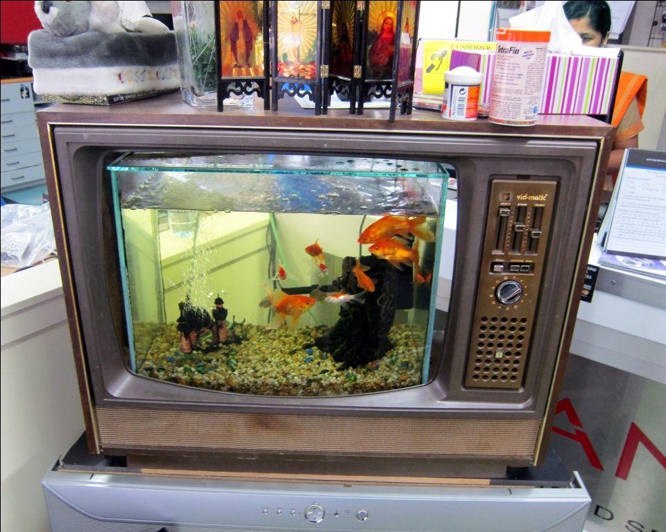 Creative idea unisual television fish tank idea 12 unique for Cool fish tank