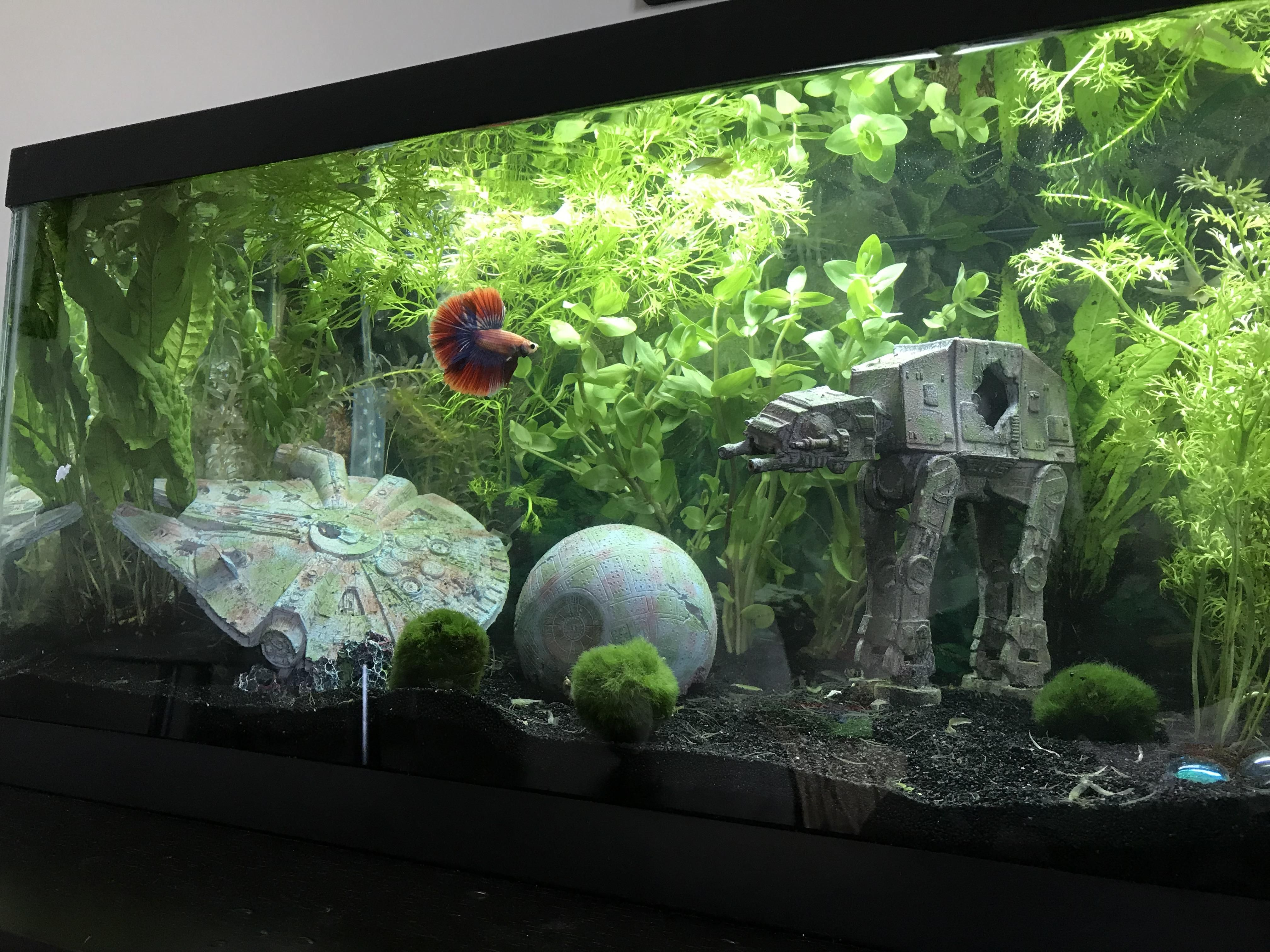 My 20 Gallon Long Star Wars Fish Tank Appearance By My Betta Poe Got The Decor At M Cool Fish Tank Decorations Fish Aquarium Decorations Fish Tank Themes
