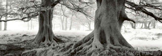 Helmut Hirler - Exmoor - Devon - England