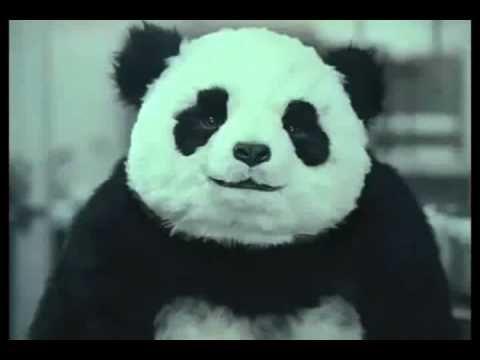Nunca le digas NO a un Panda