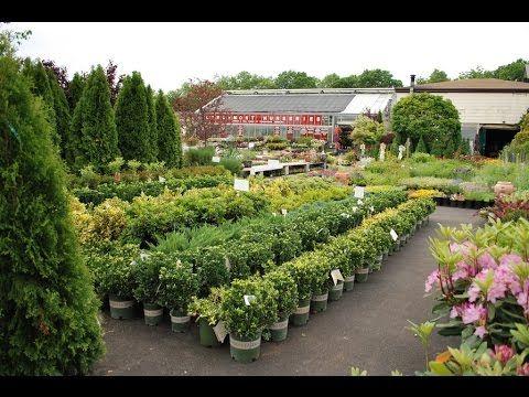 Plant Nursery Jobs