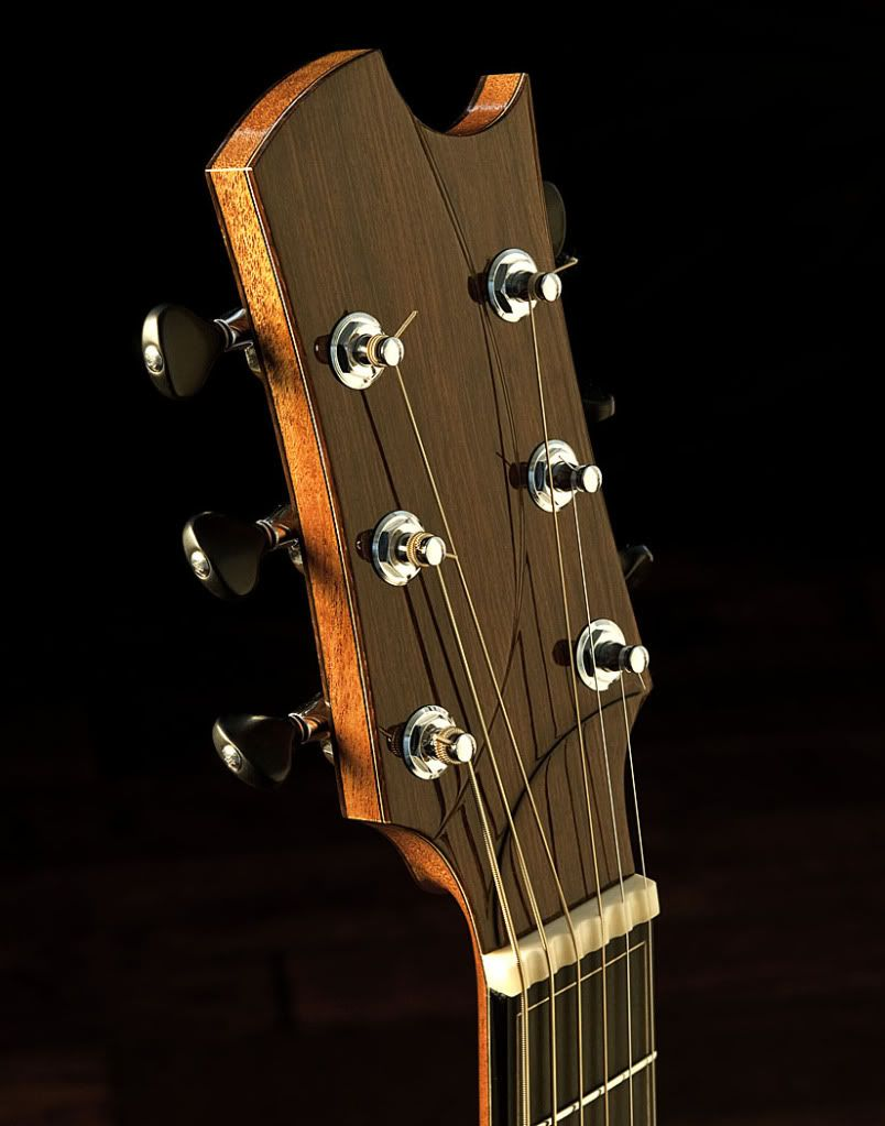 Headstock Logos The Acoustic Guitar Forum Acoustic Guitar Custom Guitars Guitar