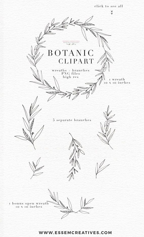 Photo of Botanical Clipart Illustration, Greenery Leaves Foliage, Dainty Fine Art Eucalyptus Olive Branch Line Art, Digital Wreath PNG Floral Clipart