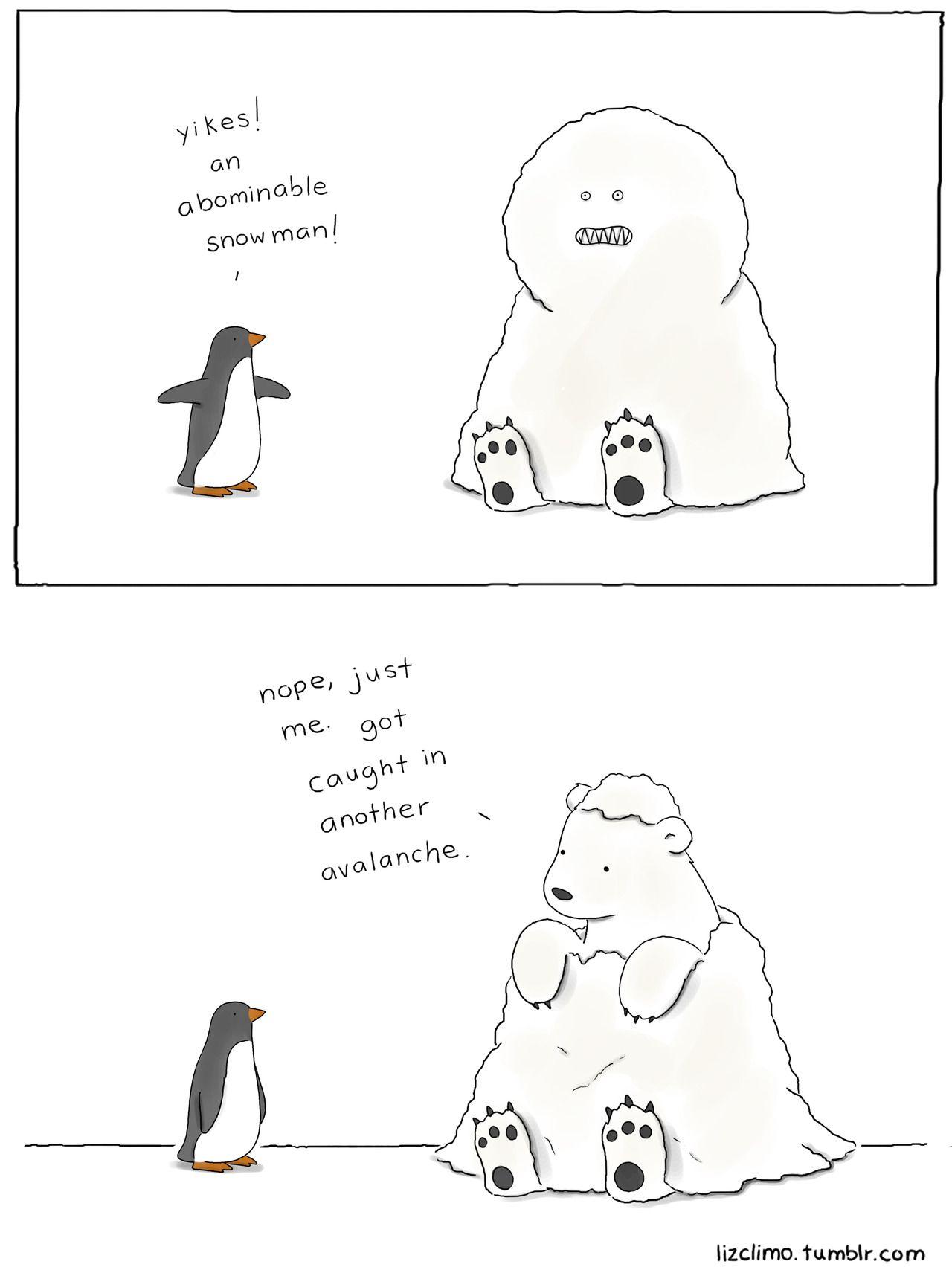 Cute Bear Jokes