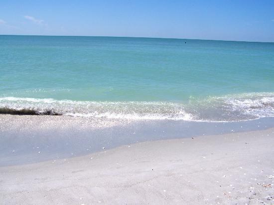 Pin On Sanibel Life S A Real Beach