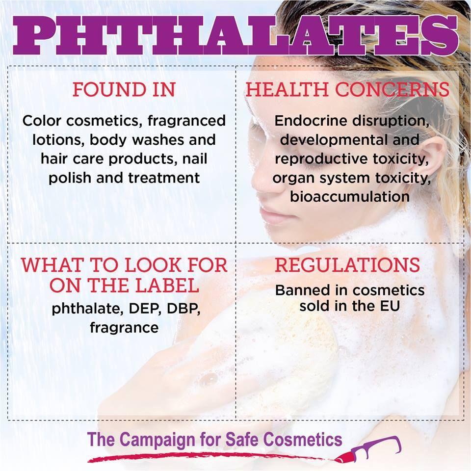 Phthalates Safe cosmetics, Endocrine, Endocrine disruptors
