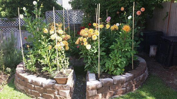 DIY Keyhole Garden - Thehomesteadingboards.com