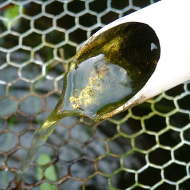 Homemade Algae Cleaner For Ponds Ponds And Fountains