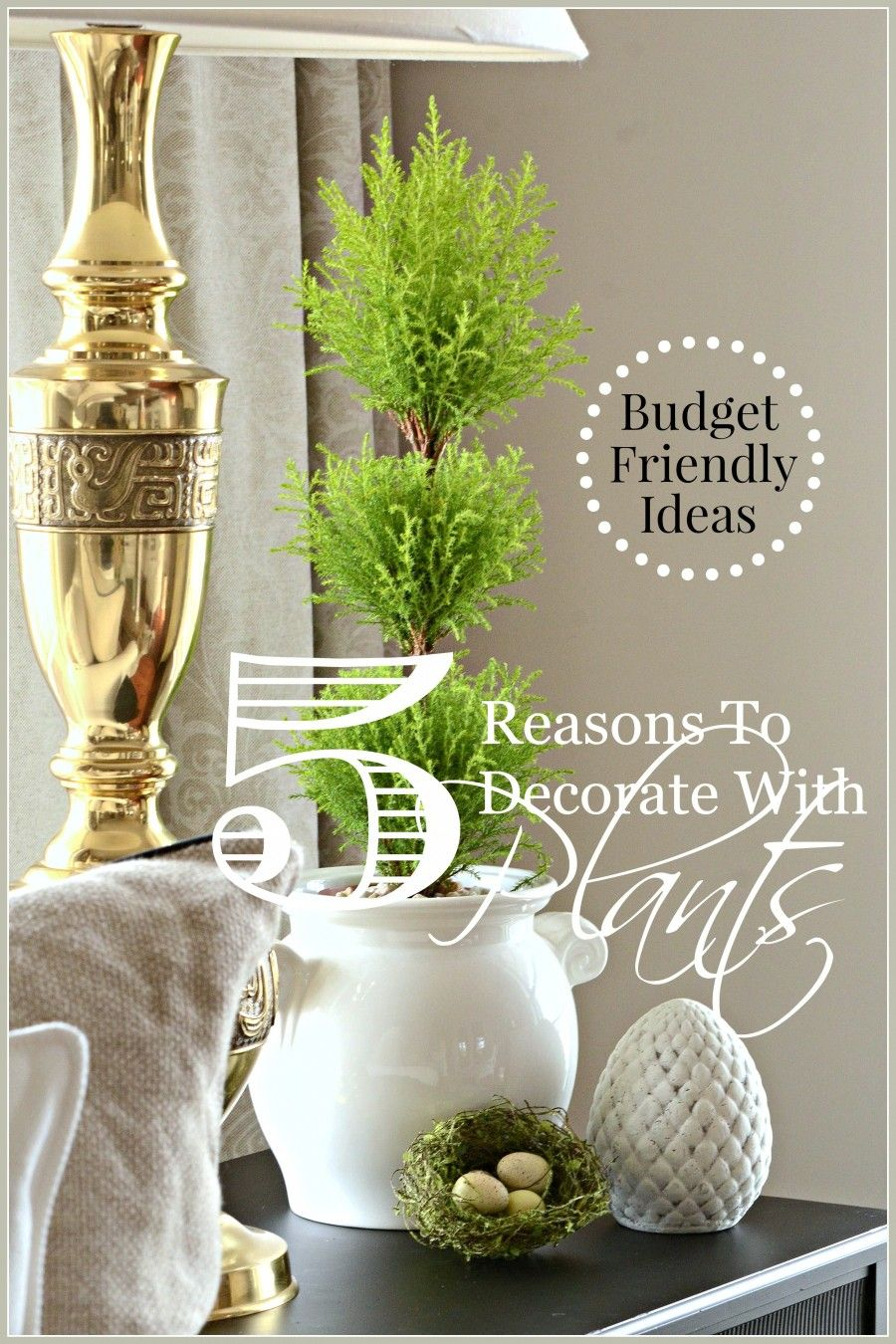 Budget Friendly Diy Home Decorating Ideas Tutorials 2017: 5 REASONS TO DECORATE WITH PLANTS... BUDGET FRIENDLY DECOR