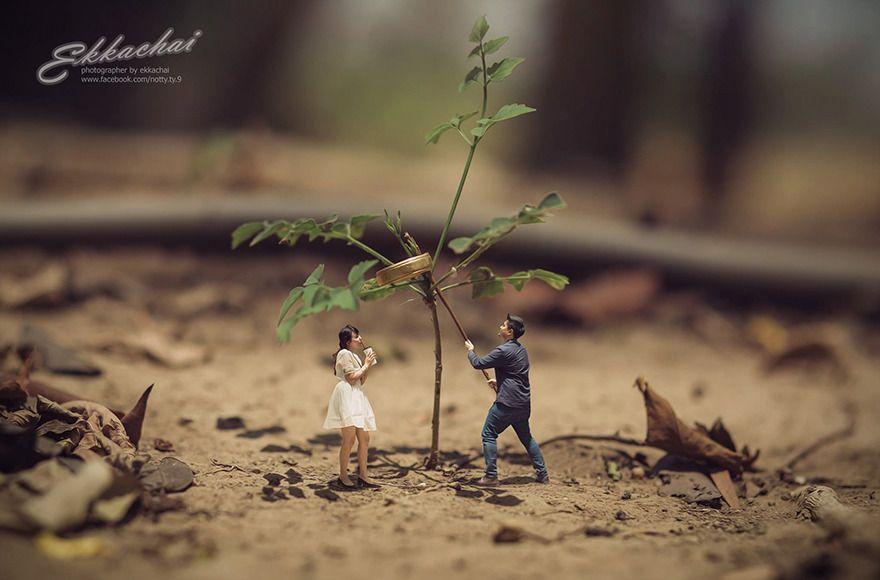 Este Fotógrafo De Casamento Transforma Casais Em Miniaturas