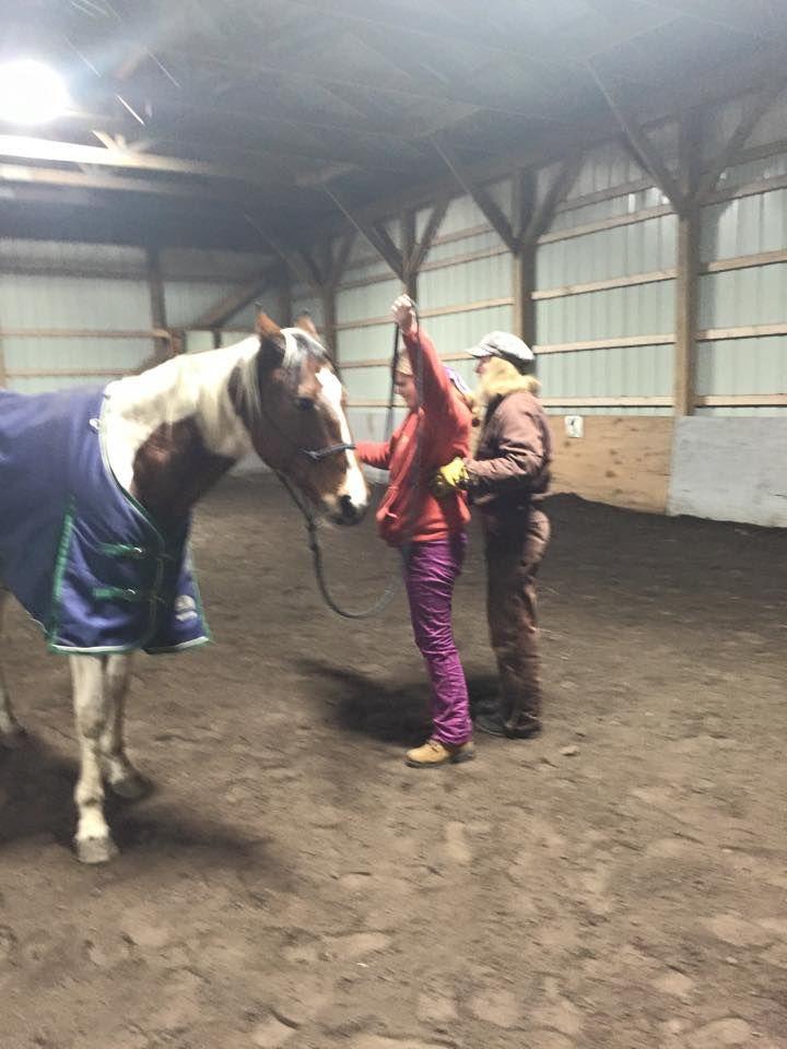1/22/15 Horsemanship class with Beth Dicicco.