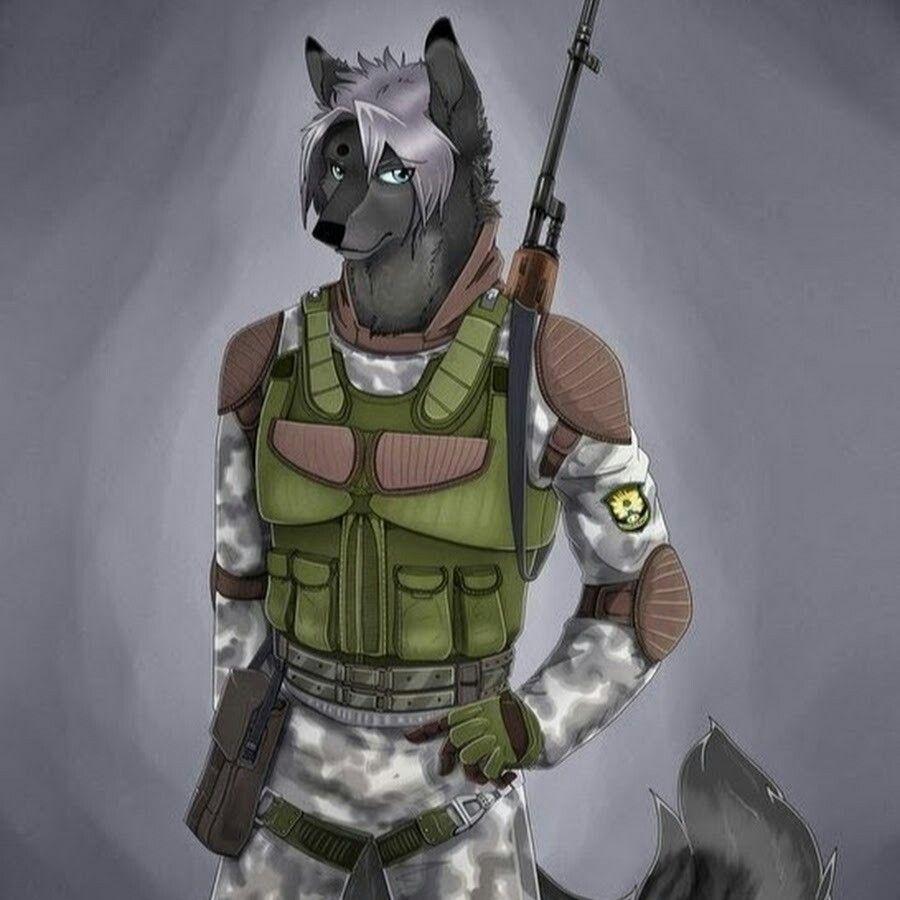 Картинки волк сталкера