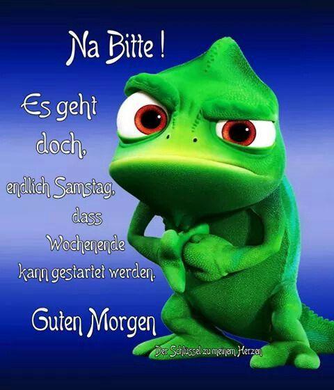 Pin Von Susann Ruttka Auf Guten Morgen Samstag Morgen Spruche Guten Morgen Lustig Lustige Guten Morgen Grusse