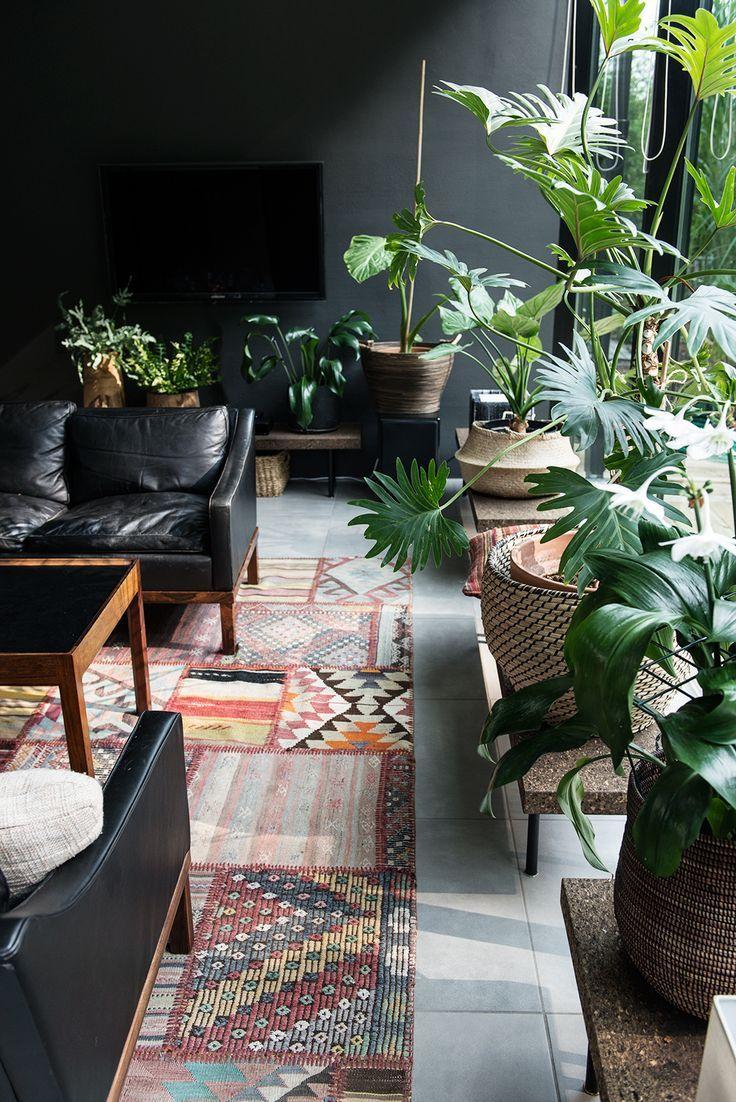 Nature décoration intérieure living rooms pinterest plants