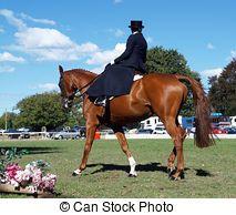 Side Saddle Rider - A chestnut being ridden side saddle...