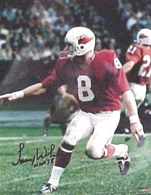 St Louis Football Cardinals Larry Wilson St Louis Cardinals Football Cardinals Football Football