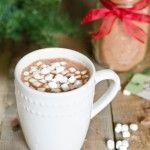 Lækkert - kommer på min to-do-julegaveliste! Fundet her: DIY Hot Chocolate Mix (without dry milk powder!) | Amy Kay's Kitchen