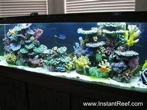 Pin By Alexa Rosenberg On Marine Aquariums Reef Aquarium Coral Reef Aquarium Artificial Coral