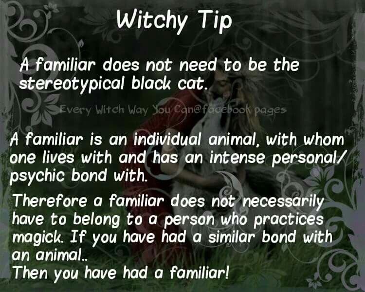 Witchery Familiars