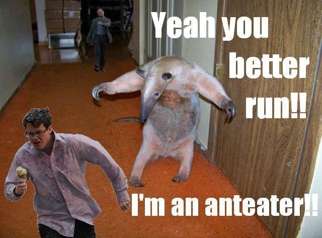 Fuck you i m an aardvark, hot naked wet men